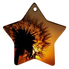 Dandelion Star Ornament