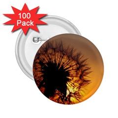 Dandelion 2.25  Button (100 pack)