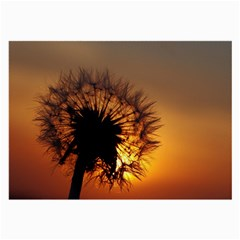 Dandelion Glasses Cloth (large, Two Sided)