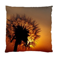 Dandelion Cushion Case (Two Sided)