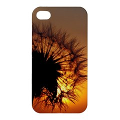 Dandelion Apple iPhone 4/4S Hardshell Case