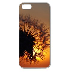Dandelion Apple Seamless Iphone 5 Case (clear)