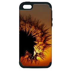 Dandelion Apple iPhone 5 Hardshell Case (PC+Silicone)