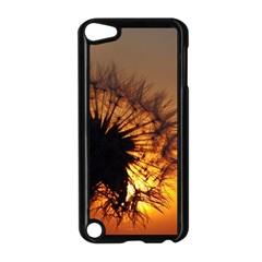 Dandelion Apple iPod Touch 5 Case (Black)