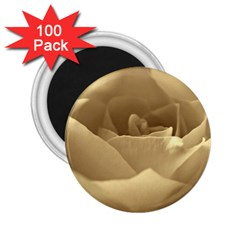 Rose  2.25  Button Magnet (100 pack)