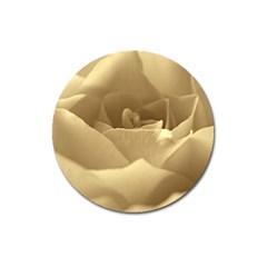 Rose  Magnet 3  (round)