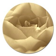 Rose  Magnet 5  (round)