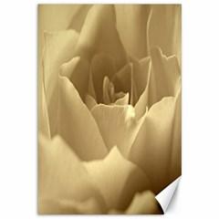 Rose  Canvas 12  X 18  (unframed)