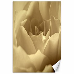 Rose  Canvas 20  x 30  (Unframed)