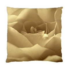Rose  Cushion Case (single Sided)