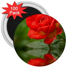 Rose 3  Button Magnet (100 pack)