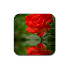 Rose Drink Coasters 4 Pack (Square)