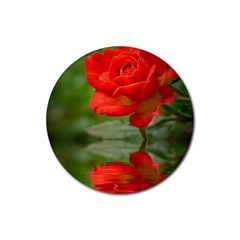 Rose Drink Coasters 4 Pack (Round)