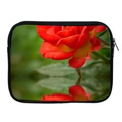 Rose Apple iPad 2/3/4 Zipper Case