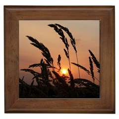 Sunset Framed Ceramic Tile
