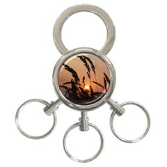 Sunset 3-Ring Key Chain