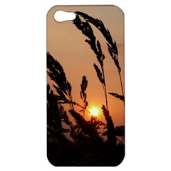 Sunset Apple iPhone 5 Hardshell Case
