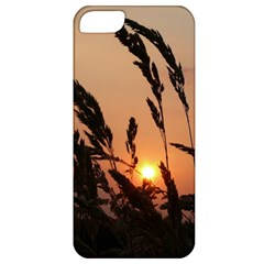 Sunset Apple Iphone 5 Classic Hardshell Case