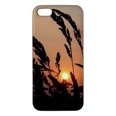 Sunset iPhone 5 Premium Hardshell Case