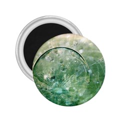 Dreamland 2.25  Button Magnet