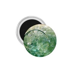 Dreamland 1.75  Button Magnet