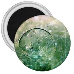 Dreamland 3  Button Magnet