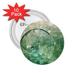 Dreamland 2.25  Button (10 pack)