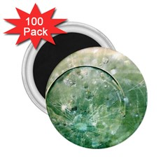 Dreamland 2.25  Button Magnet (100 pack)