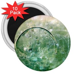 Dreamland 3  Button Magnet (10 pack)