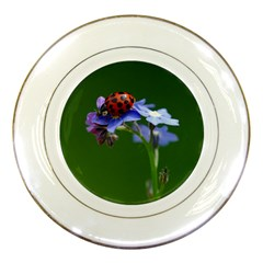 Good Luck Porcelain Display Plate