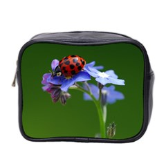 Good Luck Mini Travel Toiletry Bag (Two Sides)