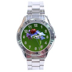 Good Luck Stainless Steel Watch (Men s)