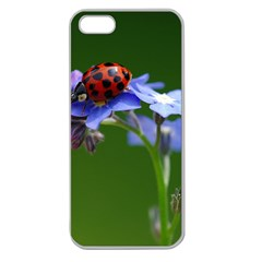 Good Luck Apple Seamless Iphone 5 Case (clear)