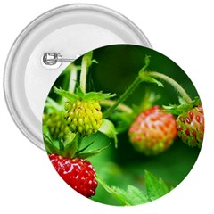 Strawberry  3  Button