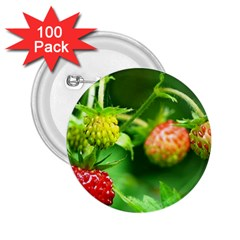 Strawberry  2.25  Button (100 pack)