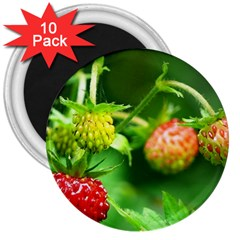 Strawberry  3  Button Magnet (10 pack)