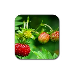 Strawberry  Drink Coasters 4 Pack (Square)