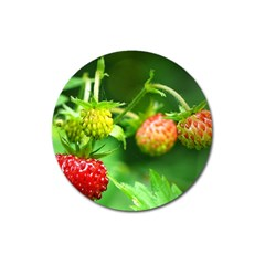 Strawberry  Magnet 3  (Round)