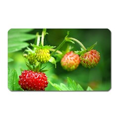 Strawberry  Magnet (Rectangular)