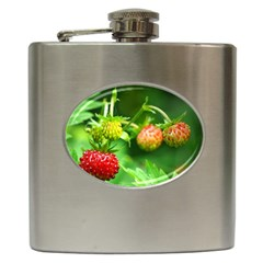 Strawberry  Hip Flask