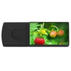 Strawberry  1GB USB Flash Drive (Rectangle)