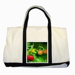 Strawberry  Two Toned Tote Bag