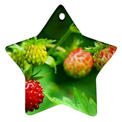 Strawberry  Star Ornament (two Sides)