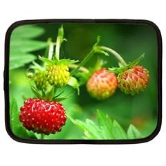 Strawberry  Netbook Case (Large)