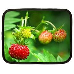 Strawberry  Netbook Case (xl)