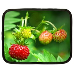 Strawberry  Netbook Case (XXL)