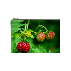 Strawberry  Cosmetic Bag (Medium)