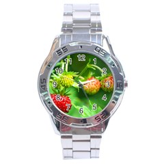 Strawberry  Stainless Steel Watch (men s)