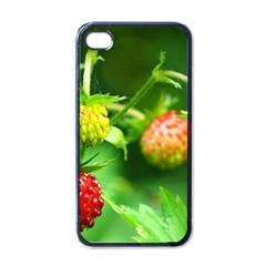 Strawberry  Apple iPhone 4 Case (Black)
