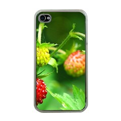 Strawberry  Apple iPhone 4 Case (Clear)